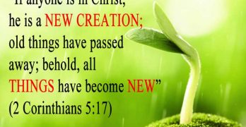 What is Regeneration in the Bible